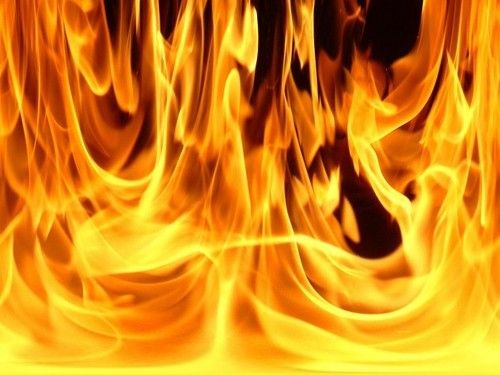 Ayant apporté leurs livres, les brûlèrent